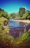 Lato pacifico del fiume Fotografia Stock