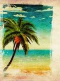 Lato palma i plaża ilustracja wektor