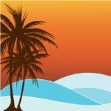lato palmowy drzewo Zdjęcie Royalty Free