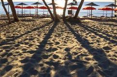 Lato: piękne piaskowate plaże Apulia Włochy Salento wybrzeże: linia brzegowa backlit z drzewami i parasolami fotografia royalty free