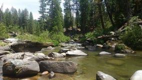 Lato piękna rzeka Zdjęcia Royalty Free