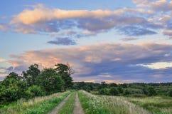 Lato piękny krajobraz Fotografia Royalty Free