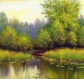 Lato piękny krajobraz Obraz Royalty Free