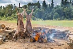 Lato pinkin na kranu las Na pożarniczy dwa ścierwa barany smaży zdjęcie stock