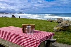 Lato pinkin przy Pacyficznego oceanu parkiem Fotografia Royalty Free