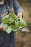Lato plenerowa aktywność dla dzieciaków - śmieciarza polowanie, liście sortuje w jajecznym pudełku Obrazy Stock