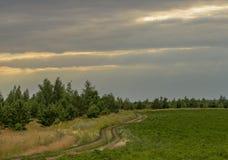 Lato Pogodny lato krajobraz z zmielonym wiejskiej drogi omijaniem przez zieleni łąk i poly Piękny biel chmurnieje wewnątrz obraz stock