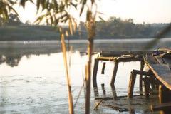 Lato pogodny ranek na stawie w wiosce Obraz Stock