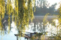 Lato pogodny ranek na stawie w wiosce Obrazy Royalty Free
