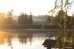 Lato pogodny ranek na stawie w wiosce Obraz Royalty Free