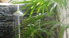 Lato prysznic głowy wodna kiść w pięknym ogródzie w zwolnionym tempie 3840x2160 zbiory wideo