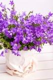 Lato purpur kwiatu dekoracja Zdjęcia Royalty Free