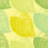 Lato ręka rysujący liść Tapetowy bezszwowy deseniowy tło royalty ilustracja