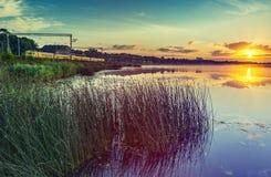 Lato ranek przy dużą rzeką, Europa Obraz Royalty Free
