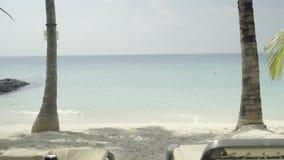 Lato relaksuje przeciw ciepły niebiański i błękitnemu, plażowy pokładu krzesło na egzot plaży z drzewkami palmowymi zdjęcie wideo