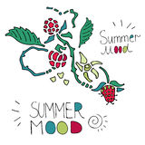 Lato skład z malinkami na białym tle Zdjęcie Stock