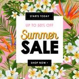 Lato sprzedaży Kwiecisty sztandar Sezonowa Dyskontowa reklama z Różowymi Plumeria kwiatami Tropikalna raj wiosna ilustracja wektor