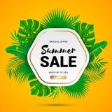 Lato sprzedaży palma opuszcza pomarańcze ilustracja wektor