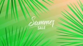 Lato sprzedaży projekta układ dla sztandaru, reklamy, karty, plakata, etc Tło z modnymi lampasami, fan palma opuszcza ilustracji
