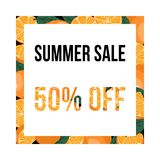Lato sprzedaży sztandar z pomarańczami ilustracji
