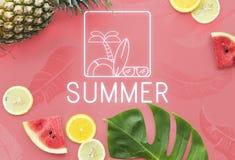Lato teksta okularów przeciwsłonecznych Surfboard drzewka palmowego ikony pojęcie Zdjęcie Royalty Free