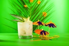 Lato tropikalny koktajl Zdjęcie Royalty Free