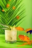 Lato tropikalny koktajl Obrazy Stock