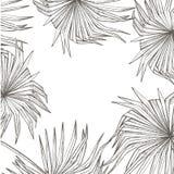 Lato tropikalnych liści wektorowy projekt Abstrakcjonistyczny kwiecisty tło Zaproszenie lub karciany projekt z dżungla liśćmi Zdjęcia Stock
