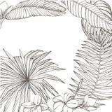 Lato tropikalnych liści wektorowy projekt Abstrakcjonistyczny kwiecisty tło Zaproszenie lub karciany projekt z dżungla liśćmi Zdjęcie Royalty Free