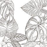 Lato tropikalnych liści wektorowy projekt Abstrakcjonistyczny kwiecisty tło Zaproszenie lub karciany projekt z dżungla liśćmi Obrazy Stock