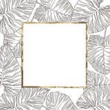 Lato tropikalnych liści wektorowy projekt z złoto ramą Abstrakcjonistyczny kwiecisty tło Zaproszenie lub karciany projekt z Fotografia Royalty Free