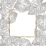 Lato tropikalnych liści wektorowy projekt z złoto ramą Abstrakcjonistyczny kwiecisty tło Zaproszenie lub karciany projekt z Zdjęcia Royalty Free