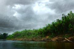 Lato ulewny deszcz Obrazy Stock