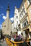 Lato uliczne kawiarnie w Starym Tallinn Zdjęcie Royalty Free