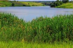 Lato upadek jezioro Zdjęcie Royalty Free