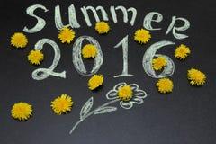 Lato 2016 w żółtych dandelions Zdjęcie Stock