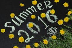 Lato 2016 w żółtych dandelions Zdjęcia Royalty Free