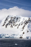Lato W Antarctica Zdjęcia Stock
