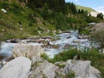 Lato w górach zdjęcia stock