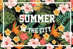 Lato w mieście, palma opuszcza i kwiaty, projekta element dla sztandaru, plakat, broszurka, ulotka kolorowy wektor Zdjęcia Stock