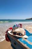 Lato w plaży obraz stock