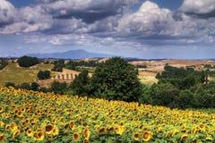 Lato w Tuscany, Włochy zdjęcie stock