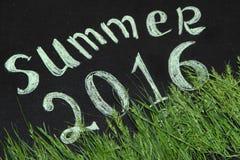 Lato 2016 w zielonej trawie Zdjęcie Stock