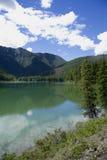 lato whiteswan jezioro Obraz Royalty Free