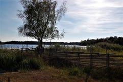 Lato wieczór w Szwedzkim archipelagu obraz royalty free