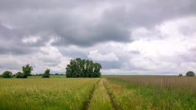 Lato wiejska droga Obrazy Stock