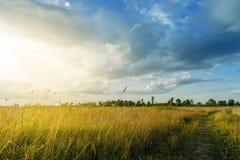 Lato wiejski krajobraz z wschodem słońca obraz stock