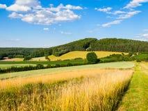 Lato witki zieleni górkowaty krajobrazowy pole, lasy, niebieskie niebo i biel chmury, Obrazy Stock