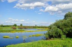 Lato wody krajobraz - lato krajobrazowy mała rzeka w lato słonecznym dniu widok Obraz Stock