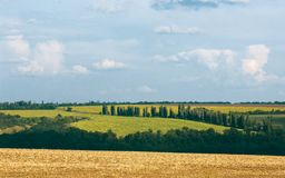 Lato wsi krajobraz z polami pod niebieskim niebem z clo zdjęcie stock